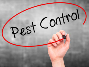 residential and commercial pest control